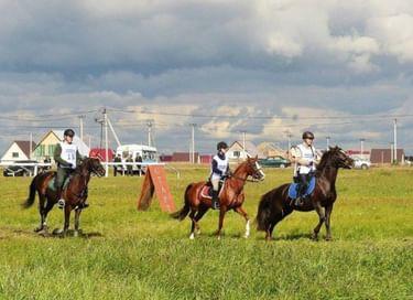 Международные соревнования по дистанционным конным пробегам