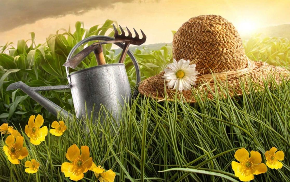 Пожалуйста злись, открытки с днем садовода и огородника