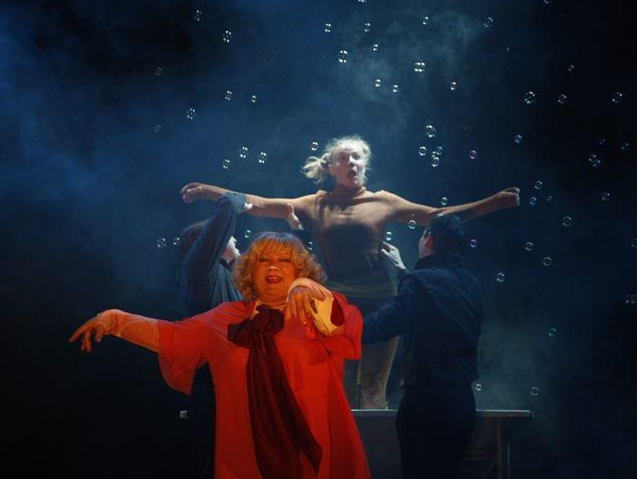 Спектакль «Каштанка»