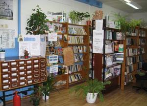 Вислополянская сельская библиотека-филиал
