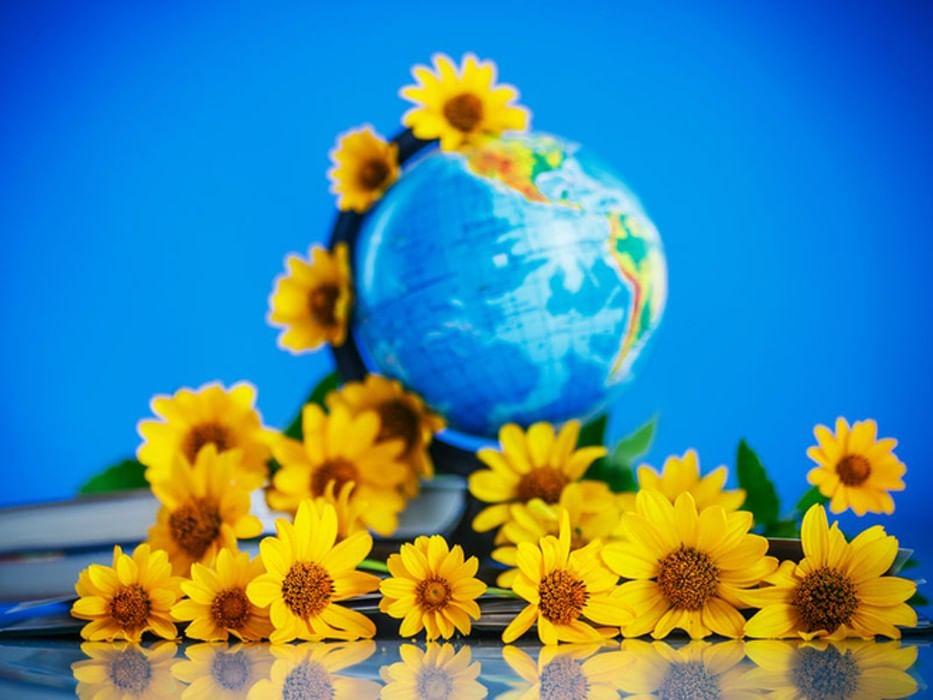 Цветы с глобусом, цветов москве
