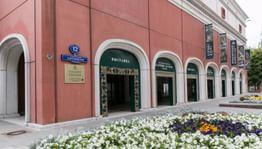 Третьяковская галерея открывает сезон допремьерных кинопоказов