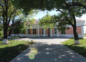 Токаревский сельский Дом культуры