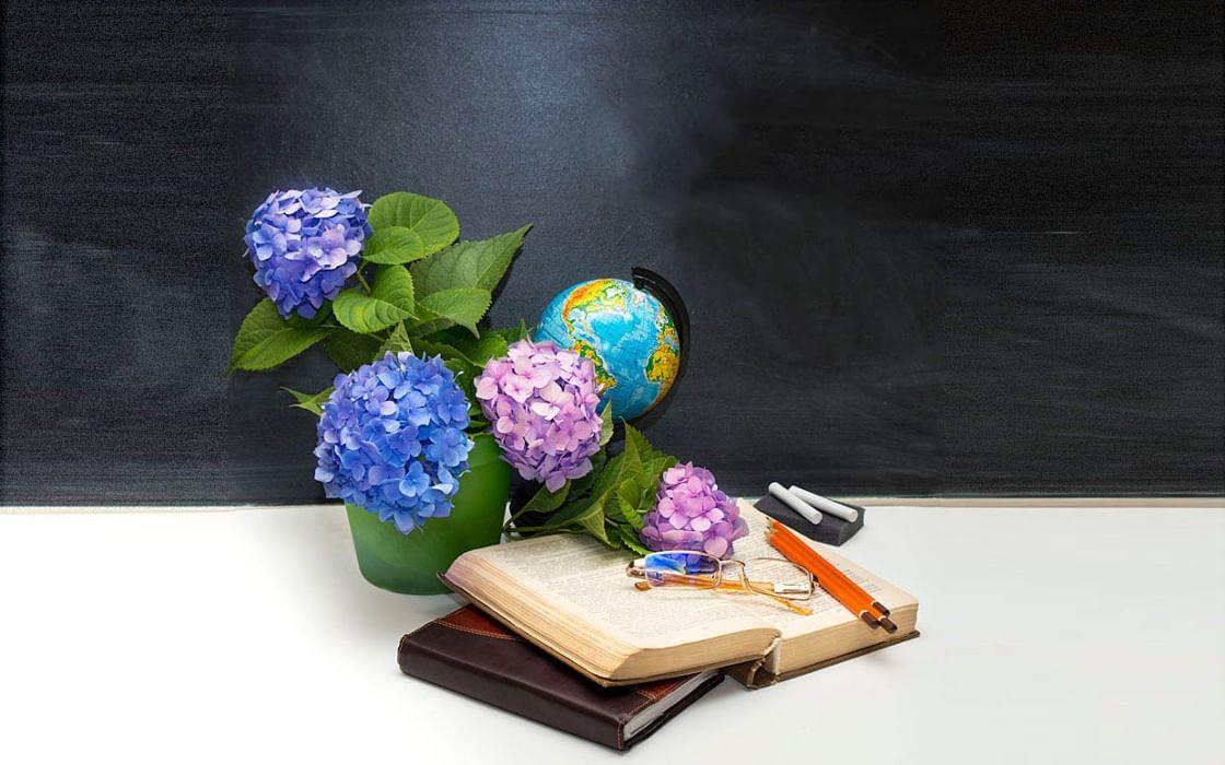 экспонирование осуществляется красивая картинка учителю на день учителя коттедж