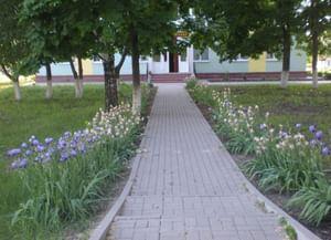 Афанасовский сельский дом культуры