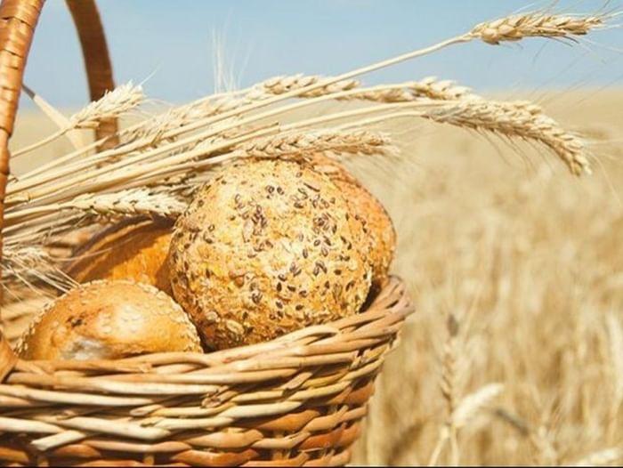 Выставка «Его величество хлеб!»