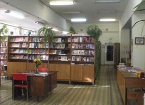 Библиотека им. Н. Н. Старостина