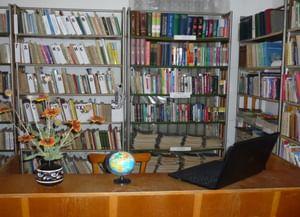 Синицынская сельская библиотека-филиал