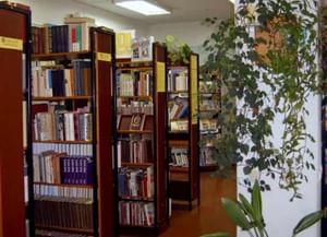 Казинская сельская библиотека-филиал