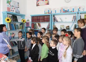 Ермаковская библиотека