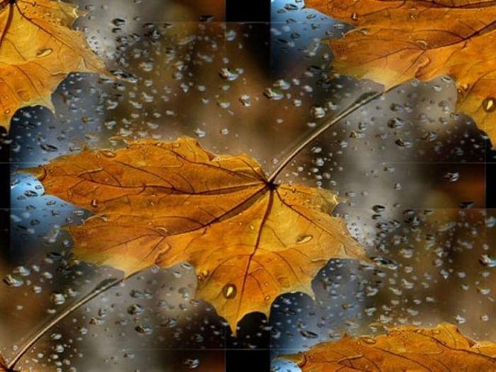 Концерт «Осенняя мелодия»