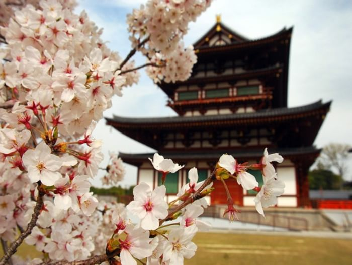Лекция «Занимательный японский»