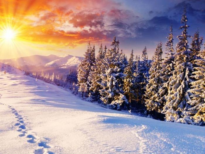 Фотовыставка «Зимы прекрасные мотивы»