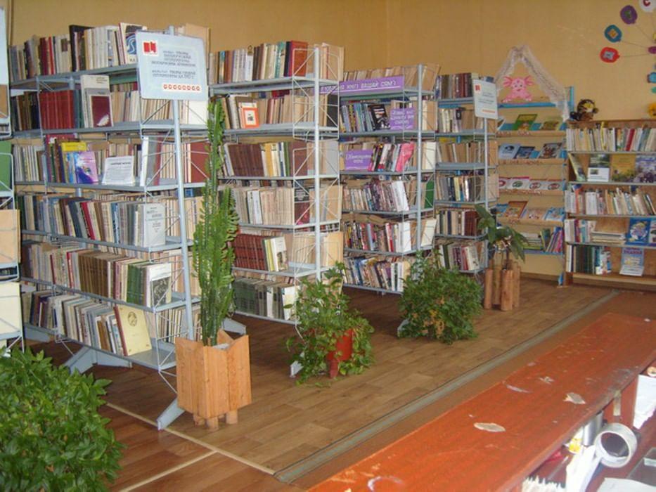 сельская библиотека картинка день рождения