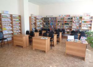 Центральная районная библиотека п. Колышлей