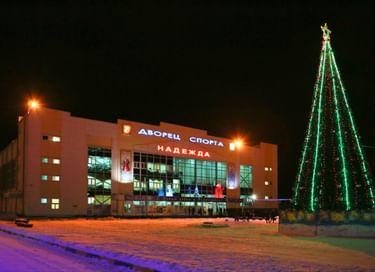 Праздник «Новогодние елки главы Серпуховского района»