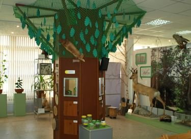 Выставка «Природа. Город. Человек»