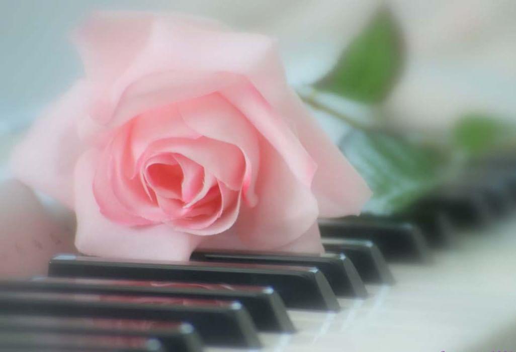 Картинка с днем рождения с пианино, домашних питомцев для