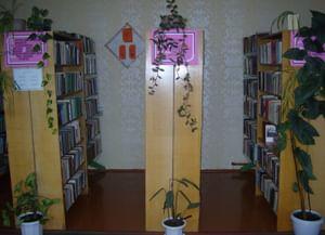 Дубровская сельская библиотека-филиал