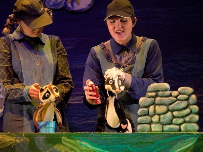Спектакль «Крошка Енот и Тот, кто живёт в пруду»