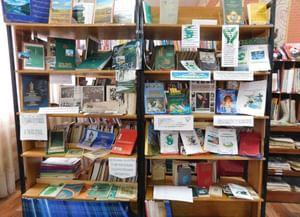 Юргинская библиотека-филиал № 19