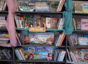 Медовская сельская библиотека