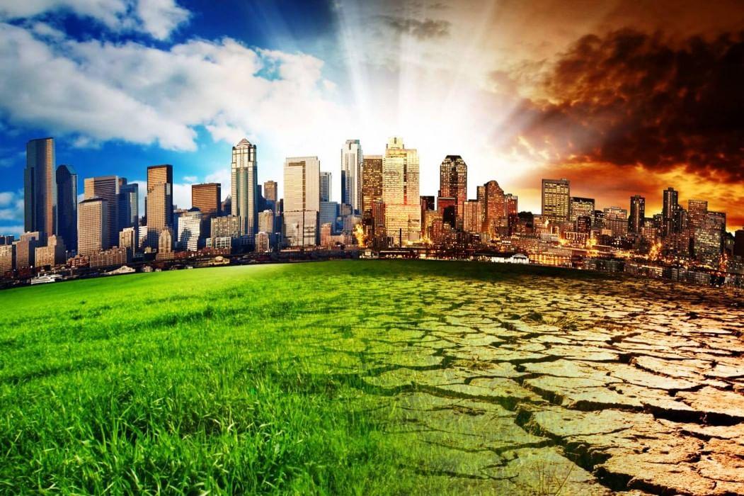 Экология картинки и фото