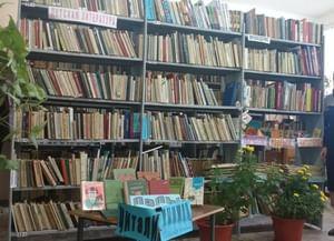 Плоскинская сельская библиотека