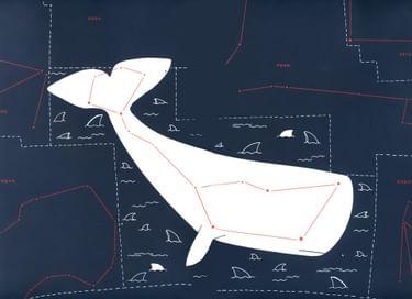 Выставка «Зоология созвездий»