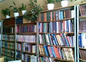 Глушицкая библиотека-филиал