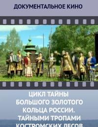 Цикл «Тайны Большого Золотого кольца России». Тайными тропами костромских лесов