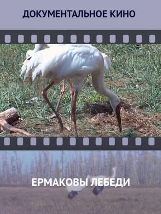 Ермаковы лебеди