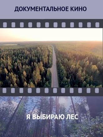 Я выбираю лес