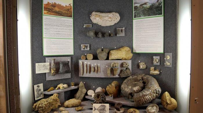 Музей природы Урала