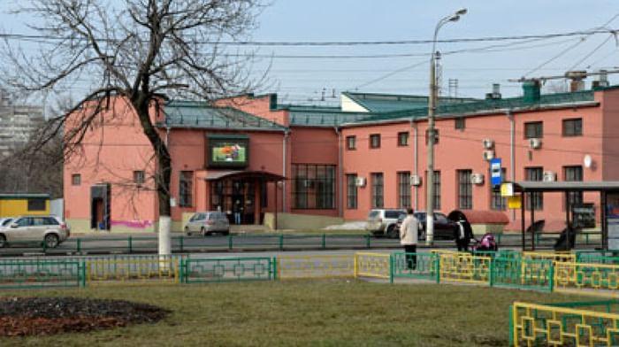 Российский музейно-выставочный центр «РОСИЗО»