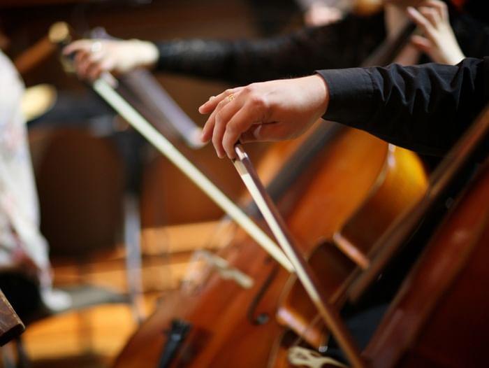 Концерт «Уроки музыки с оркестром»