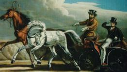 Энциклопедия безавтомобильной жизни врусской литературе