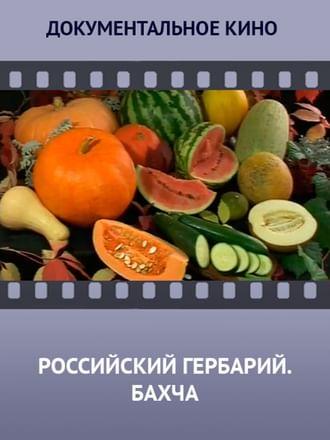 Российский гербарий. Бахча