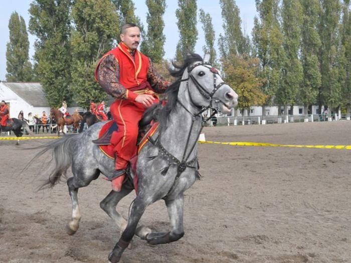 Экскурсия «Как за Доном казаки гуляют»