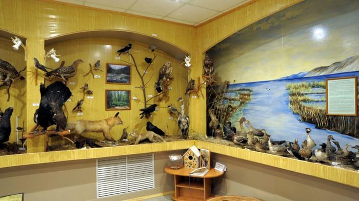 Государственный природный биосферный заповедник «Байкальский»