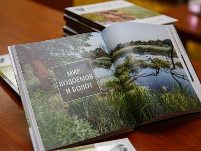 Экологическая программа «Белогорье – территория экологического просвещения»