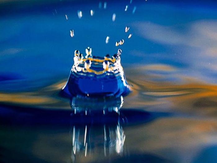Встреча «Великая тайна воды»