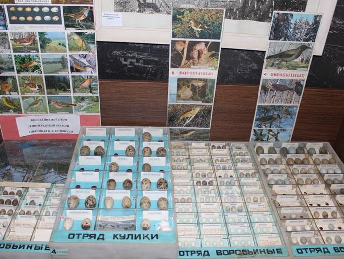 Выставка «В лесах Ленинградской области»