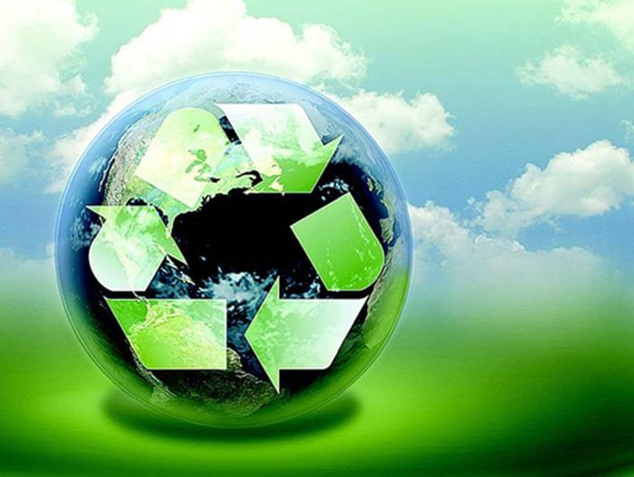 Мероприятие «Школа начинающего эколога»