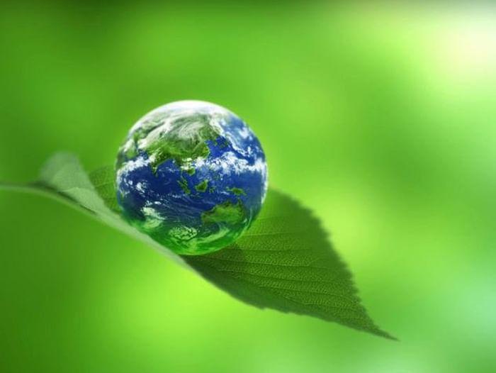 Экологическая акция «Задумайся о будущем своих потомков»