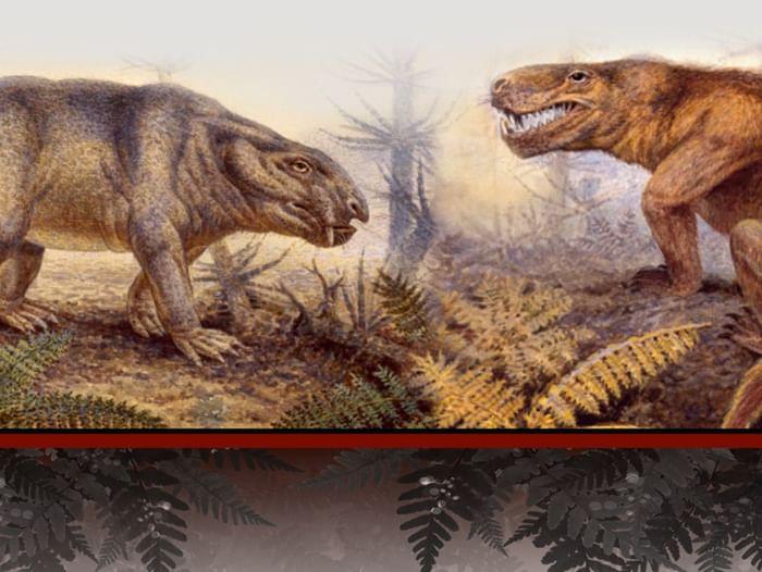 Выставка «Северодвинские ящеры профессора Амалицкого»