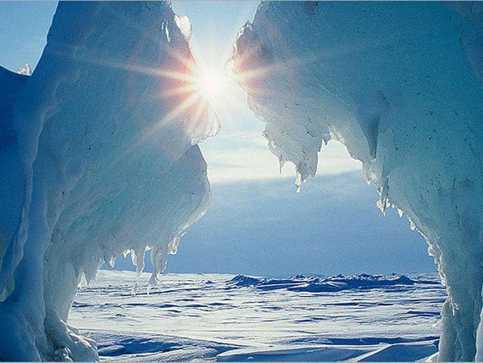 Выставка «Арктика моими глазами»