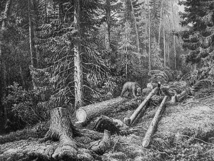 Выставка «Иван Шишкин. Живопись и графика»