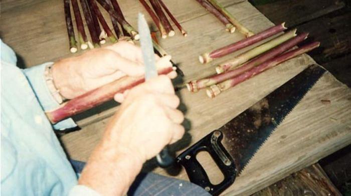 Технология изготовления многоствольных флейт пэлян у коми-пермяков