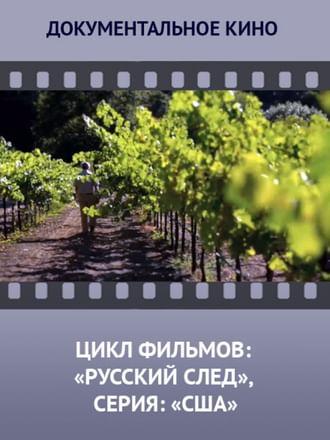 Цикл фильмов: «Русский след», серия: «США»